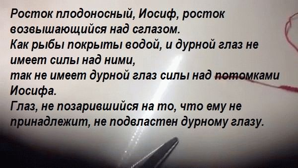 Moltva-Ben-porat-Iosef