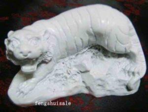 belyj-tigr