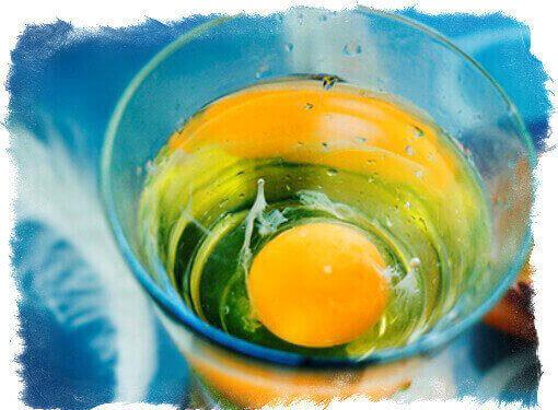 vid-jajca