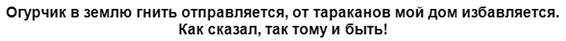 ogurec-protiv-tarakanov-tekst-prodolzhenie