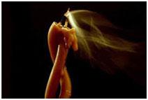 zagovor-na-vodu-dlja-ukreplenija-semejnyh-otnoshenij