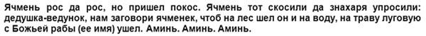 zagovor-ot-jachmenja-na-raschesku-tekst