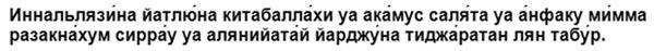 dua-dlja-poluchenija-pribyli-tekst
