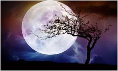 obrashhenie-k-polnoj-Lune