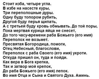 kurinyj-perepoloh-tekst